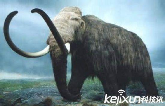复活的十大灭绝动物