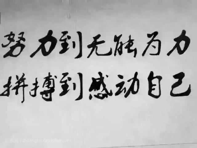 2016,努力到无能为力, 拼搏到感动自己!(深度好