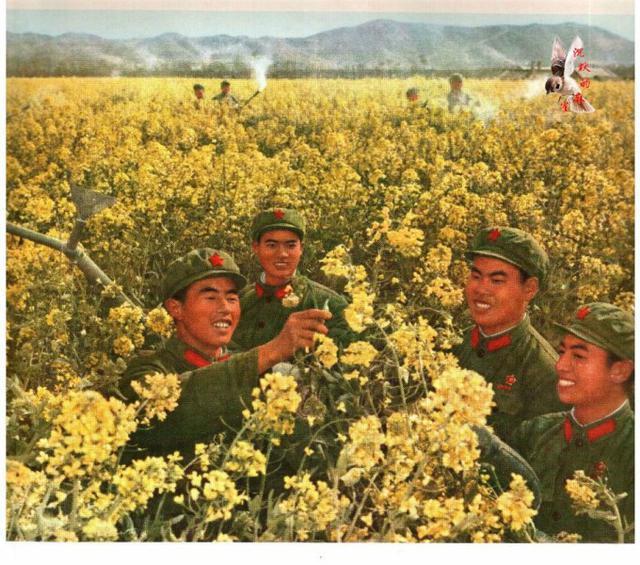 七十年代的军旅生活老照片